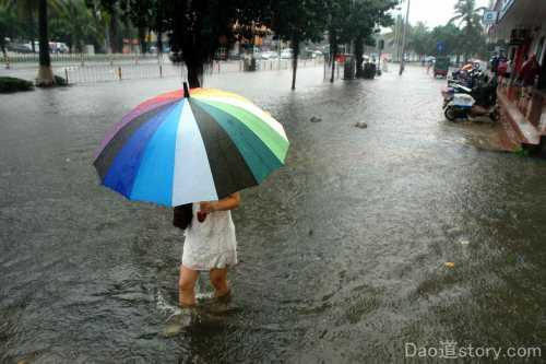 дожди и туманы: самый точный прогноз погоды на 1 февраля для всех областей украины